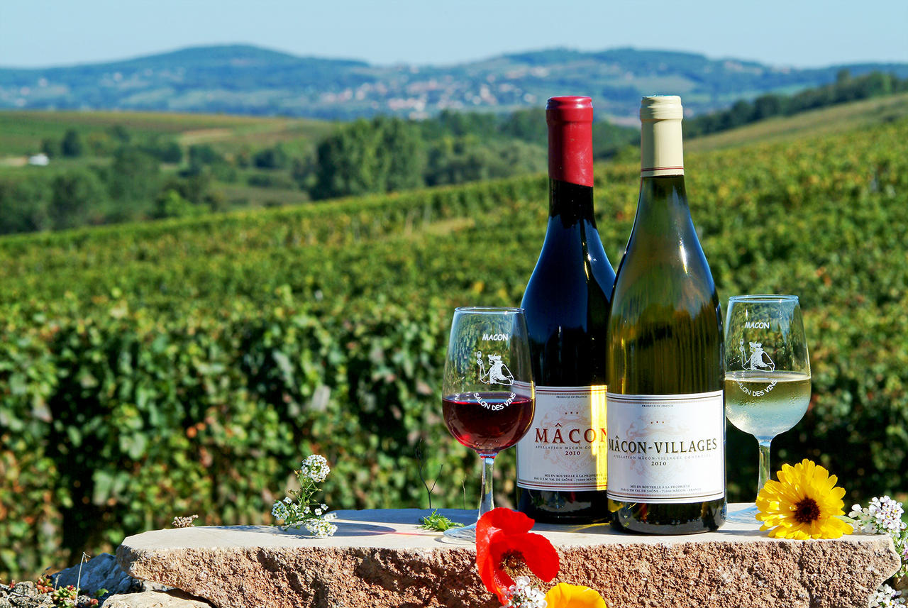 Vin de Bourgogne: le goût des instants précieux.
